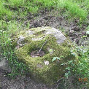 pierre st martin